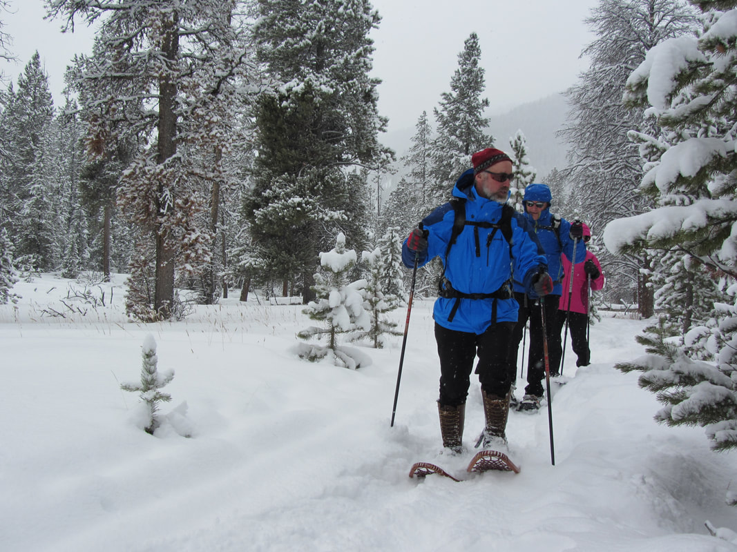 Private Yellowstone Tours and Snowshoeing in Yellowstone