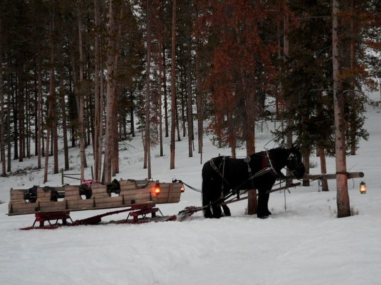 Sleigh Ride in Big Sky