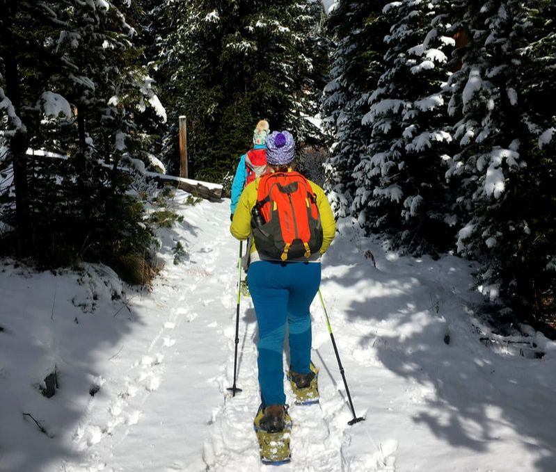 Guided Snowshoe Tours in Yellowstone