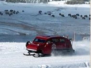 Private Snowcoach Tours in Yellowstone
