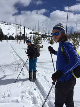 Guided skiing in Yellowstone